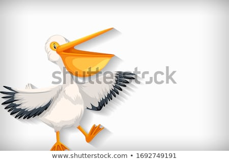Background template with plain color and pelican bird Stock photo © bluering