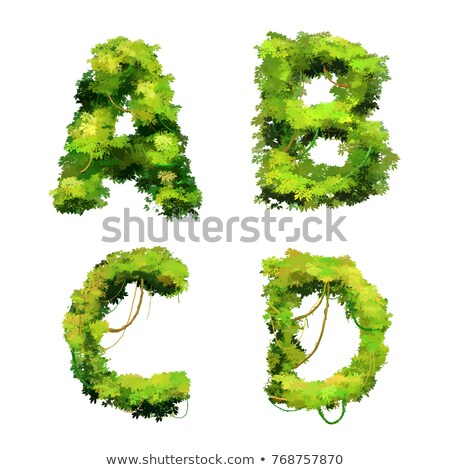 Cute cartoon tropical vines and bushes font on white, A B C D glyphs Stock photo © evgeny89