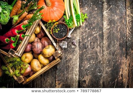 Renkli sonbahar sebze göstermek düşmek kabak Stok fotoğraf © klsbear