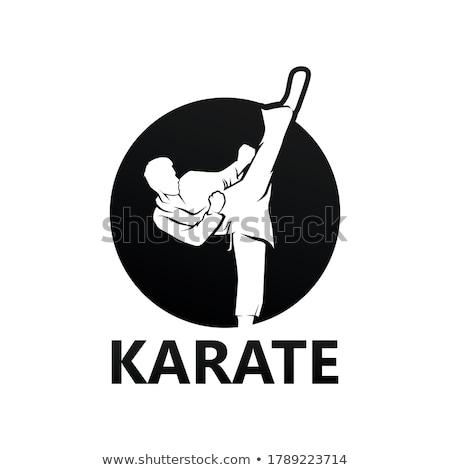 Karate çocuklar kız grup eğlence Stok fotoğraf © johnnychaos