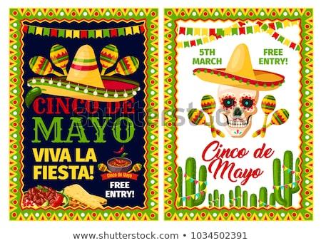 Meksika kareler çerçeve geniş kenarlı şapka kaktüs Stok fotoğraf © dayzeren