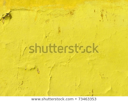 Casa velha amarelo parede textura abstrato Foto stock © artush