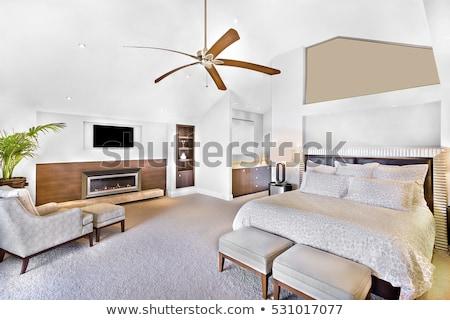 plafond · fan · kleur · cool · snel - stockfoto © photohome