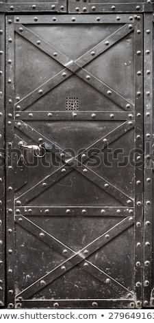 old iron door stock photo © inxti