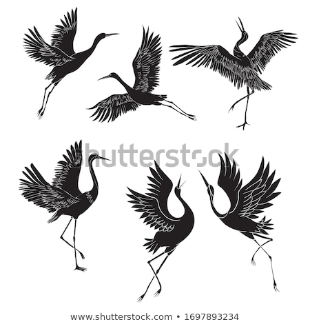 Cranes silhouettes set Stock photo © Kaludov