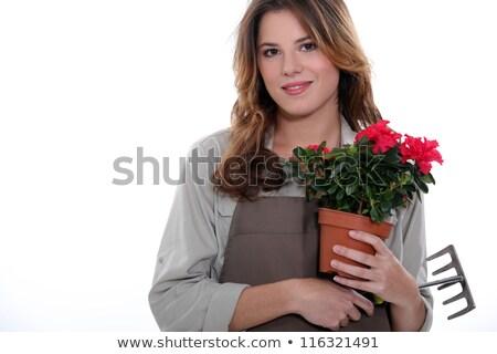 флорист завода грабли девушки улыбка кожи Сток-фото © photography33