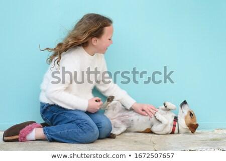 Pocak nő keverék kutya mosoly szeretet Stock fotó © lisafx