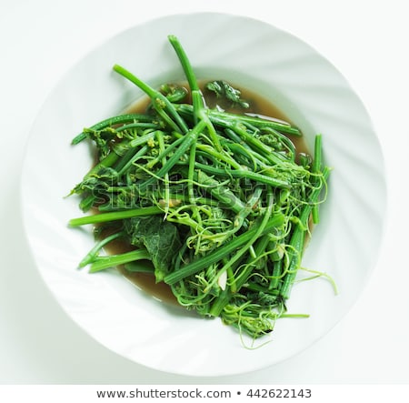 Fried bitter gourd leaf with oyster sauce Stock photo © zmkstudio