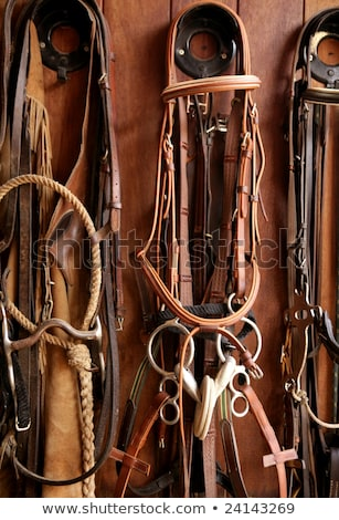 Horse riders complements, rigs, reins,  leather over wood Stock photo © lunamarina