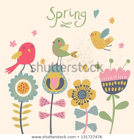 Sammlung · cute · dekorativ · Vögel · Grußkarte · Blume - stock foto © ekapanova