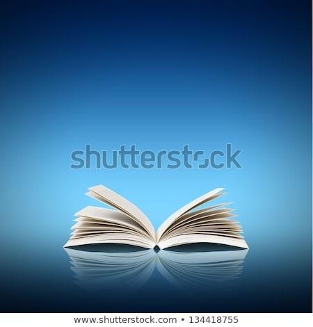 Open book isolated on light blue background Stock photo © m_pavlov