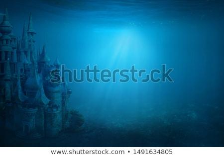 Deep Castle Stock photo © derocz