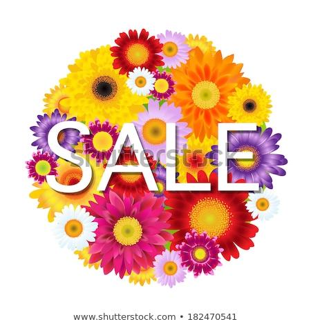 Colorful Gerbers Flowers Ball Sale Stock photo © adamson