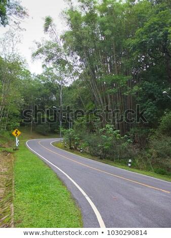Segno shot mountain bike bike divertimento Foto d'archivio © Ustofre9