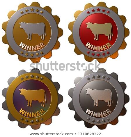 Premio vaca agricultura mostrar hombre animales Foto stock © chris2766