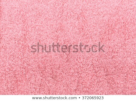 Pink Carpet Background Stock photo © njnightsky