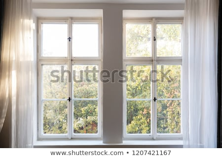 Green old house windows with wood curtains Stock photo © pixachi