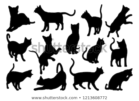 vector image   cat silhouette in jumping pose stock photo © istanbul2009