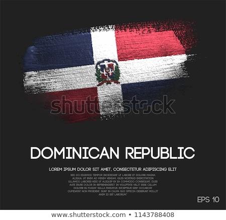 Bandera República Dominicana pintado cepillo sólido resumen Foto stock © tang90246