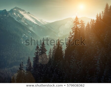 panoramic view on snow mountains in nice day stock photo © bsani