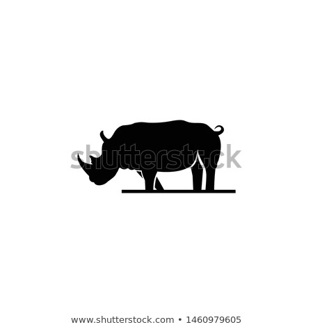Rhinoceros or Rhinocerotidae, illustration Stock photo © Morphart