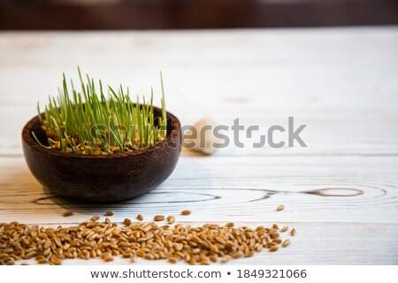 пшеницы зерна форме трава белый земле Сток-фото © m_pavlov