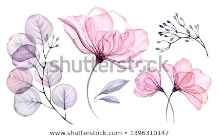 vektör · ayarlamak · basit · dekoratif · çiçekler · kırmızı - stok fotoğraf © bluering