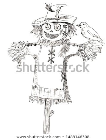 Сток-фото: Scarecrow In Autumn