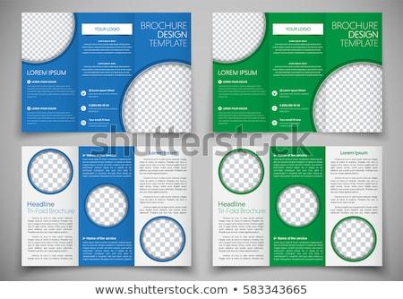 Negocios folleto disposición plantilla resumen azul Foto stock © SArts