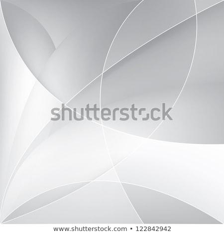 stylish gray vector wave background design Stock photo © SArts