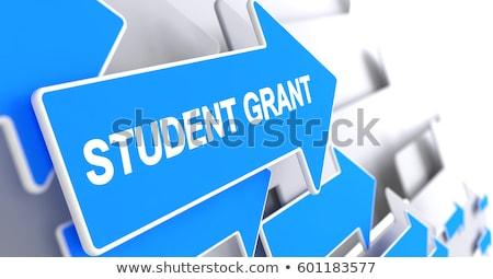 колледжей · плата · за · обучение · расходы · женщины · выпускник - Сток-фото © tashatuvango
