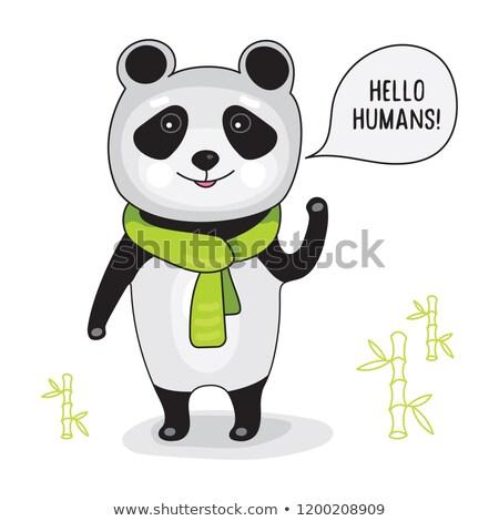 panda · assinar · preto · retro · animal - foto stock © bluering