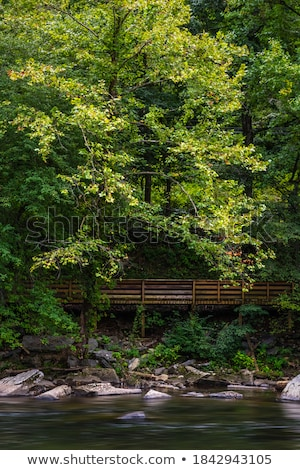 mountain river flowing through village  Stock photo © OleksandrO