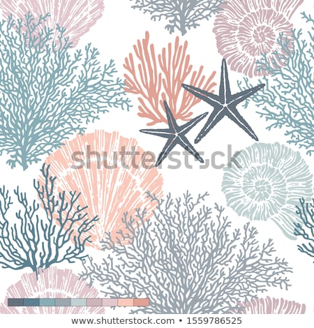 vector sea shell seamless background stock photo © freesoulproduction
