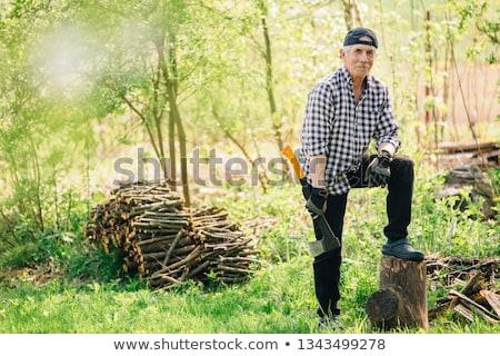 Férfi favágó kotlett fa illusztráció szakállas Stock fotó © lenm
