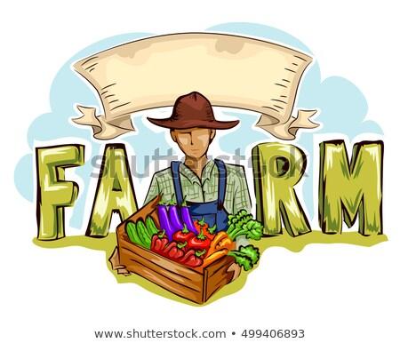 Hombre granja producir cinta banner tipografía Foto stock © lenm