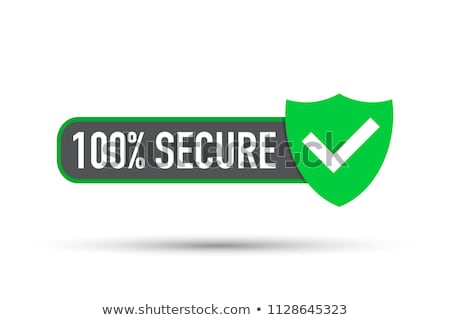 Secure payments banner Stock photo © Genestro