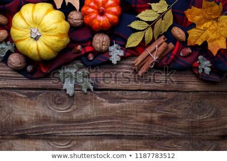 Autumn, halloween or thanksgiving backgrouund Stock photo © Lana_M