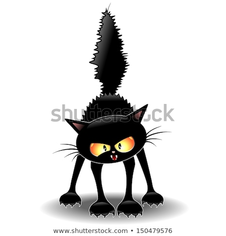 Assustado desenho animado gato preto bruxa ilustração olhando Foto stock © cthoman