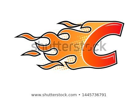 ayarlamak · logo · tasarımı · ikon · yalıtılmış · posta · güvercin - stok fotoğraf © marysan