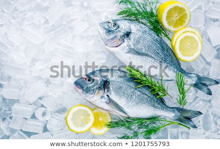 raw sea bream fish stock photo © lana_m