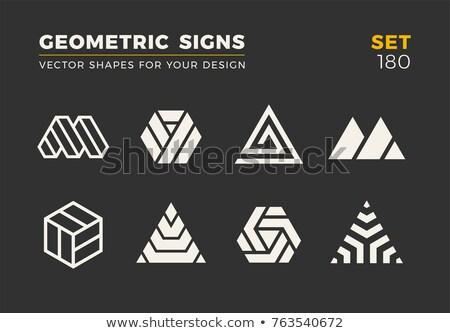 Negro espejismo triángulo vector diseno Foto stock © blaskorizov