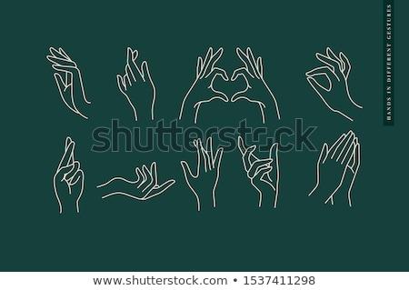 Handen vector logo icon symbool hand Stockfoto © blaskorizov