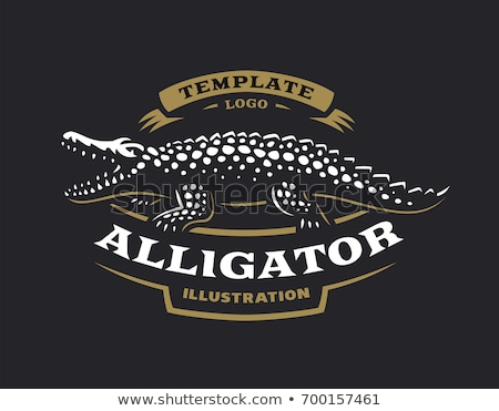 крокодила воды икона вектора логотип дизайн логотипа Сток-фото © blaskorizov