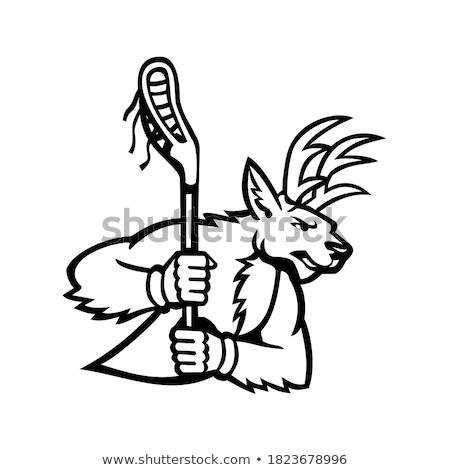 ストックフォト: バック · ラクロス · マスコット · アイコン · 実例 · 頭