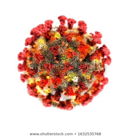 Influenza virus on white background Stock photo © colematt