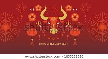 Китайский Новый год зодиак празднования икона вектора Сток-фото © robuart