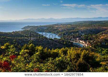 Stock photo: Stone village Lozisca on Brac island view