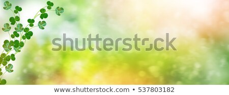 Happy Saint Patricks Day Background Design with Green Clover Leaf. Irish Beer Festival Celebration H Stock photo © articular