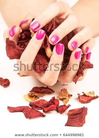 belo · feminino · dedo · unhas · rosa · prego - foto stock © serdechny